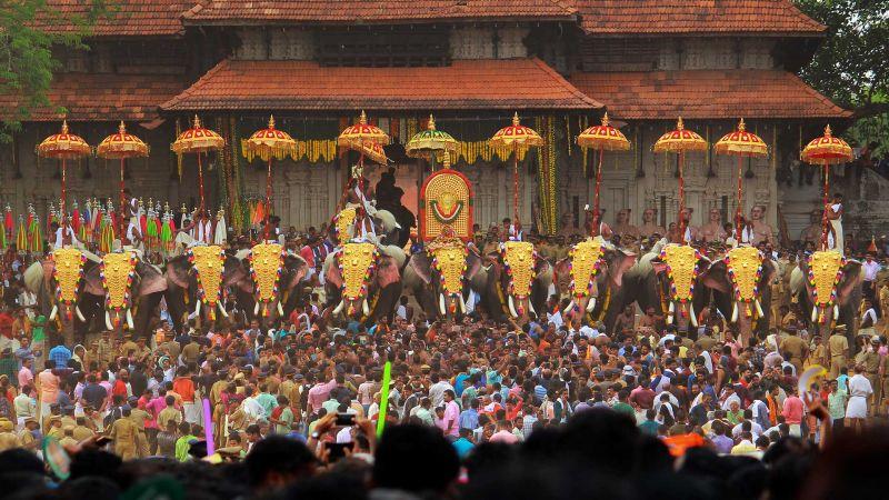 Праздник слонов в Индии