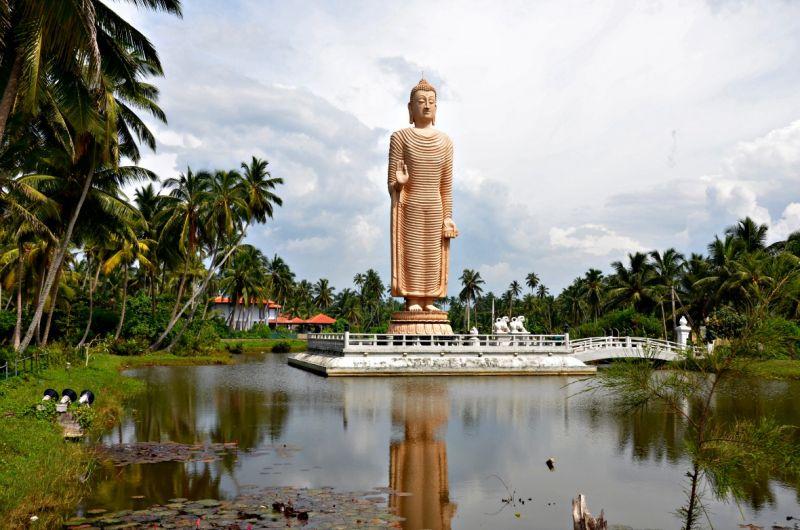 Виза в Шри-Ланку будет бесплатной