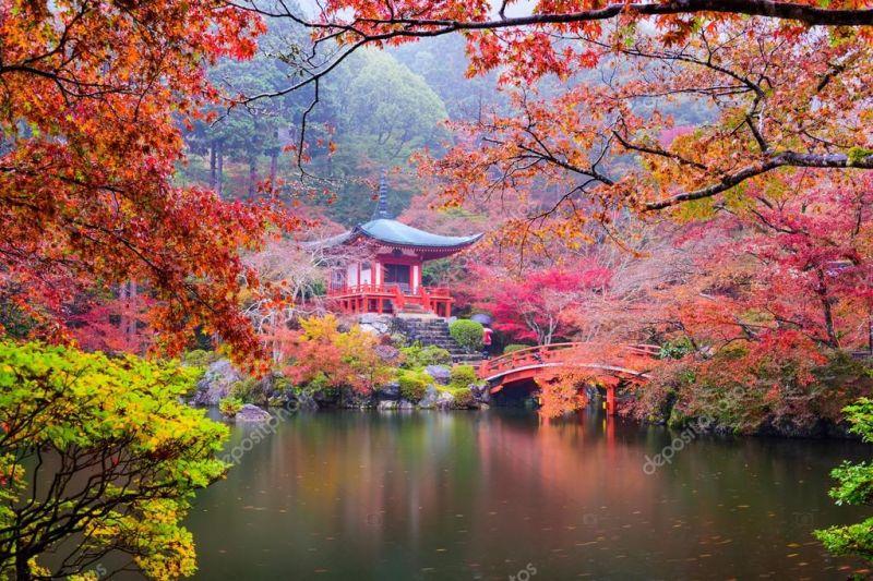 В Киото примут меры для увеличения туристического потока