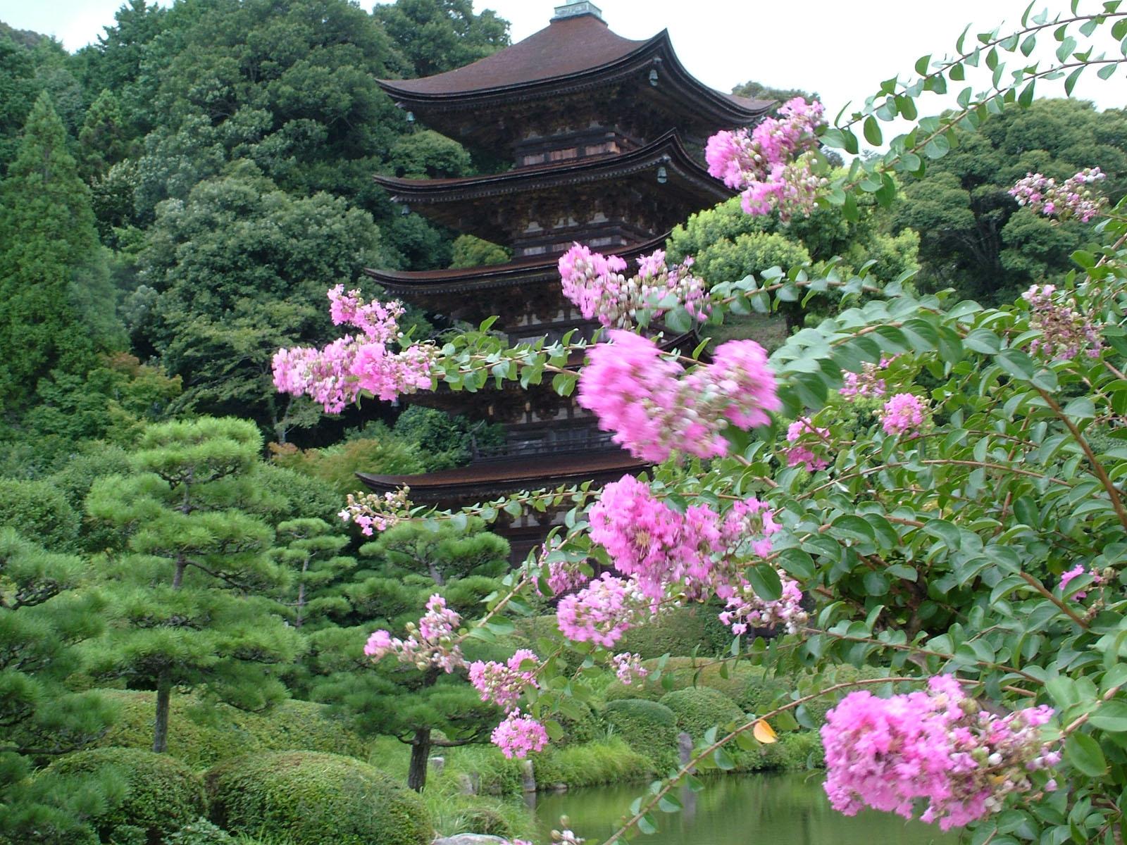 Япония япония трахают 1 фотография
