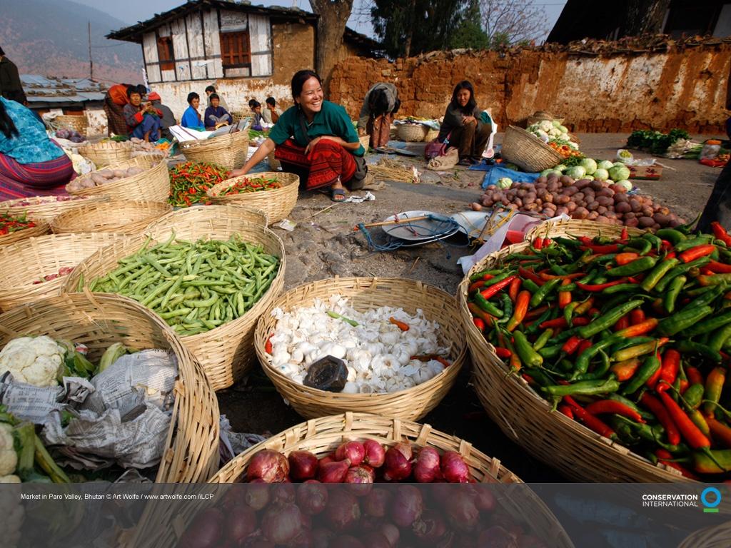Бутан Паро  фото #10906