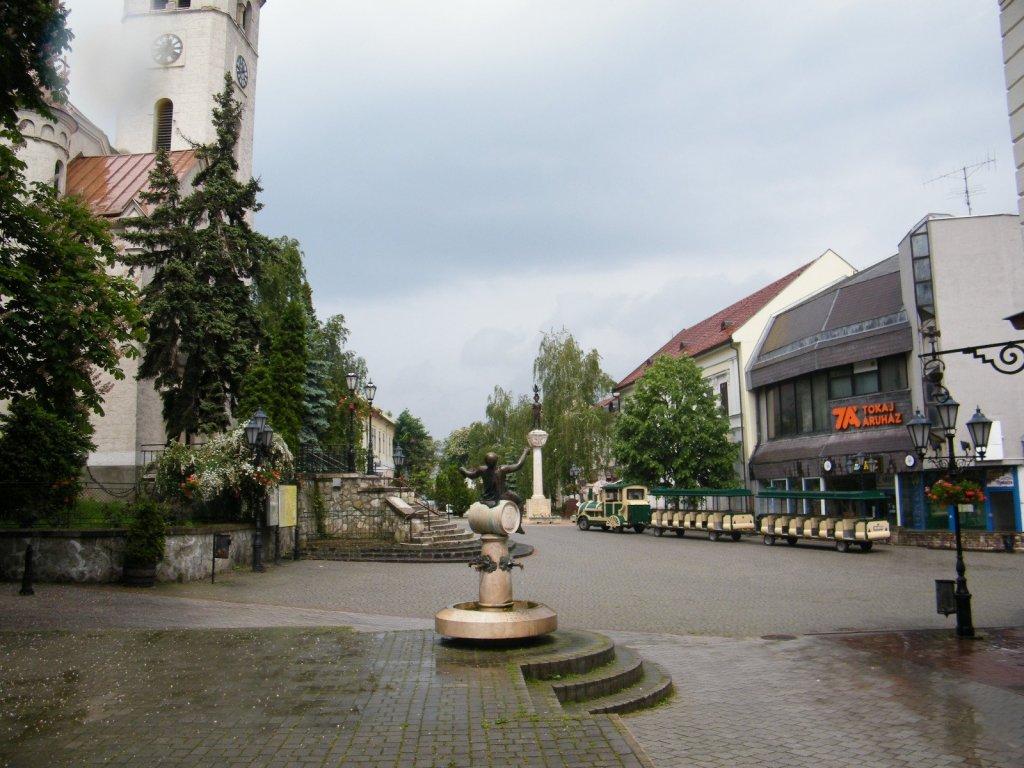 быстро, город токай венгрия фото неподалеку