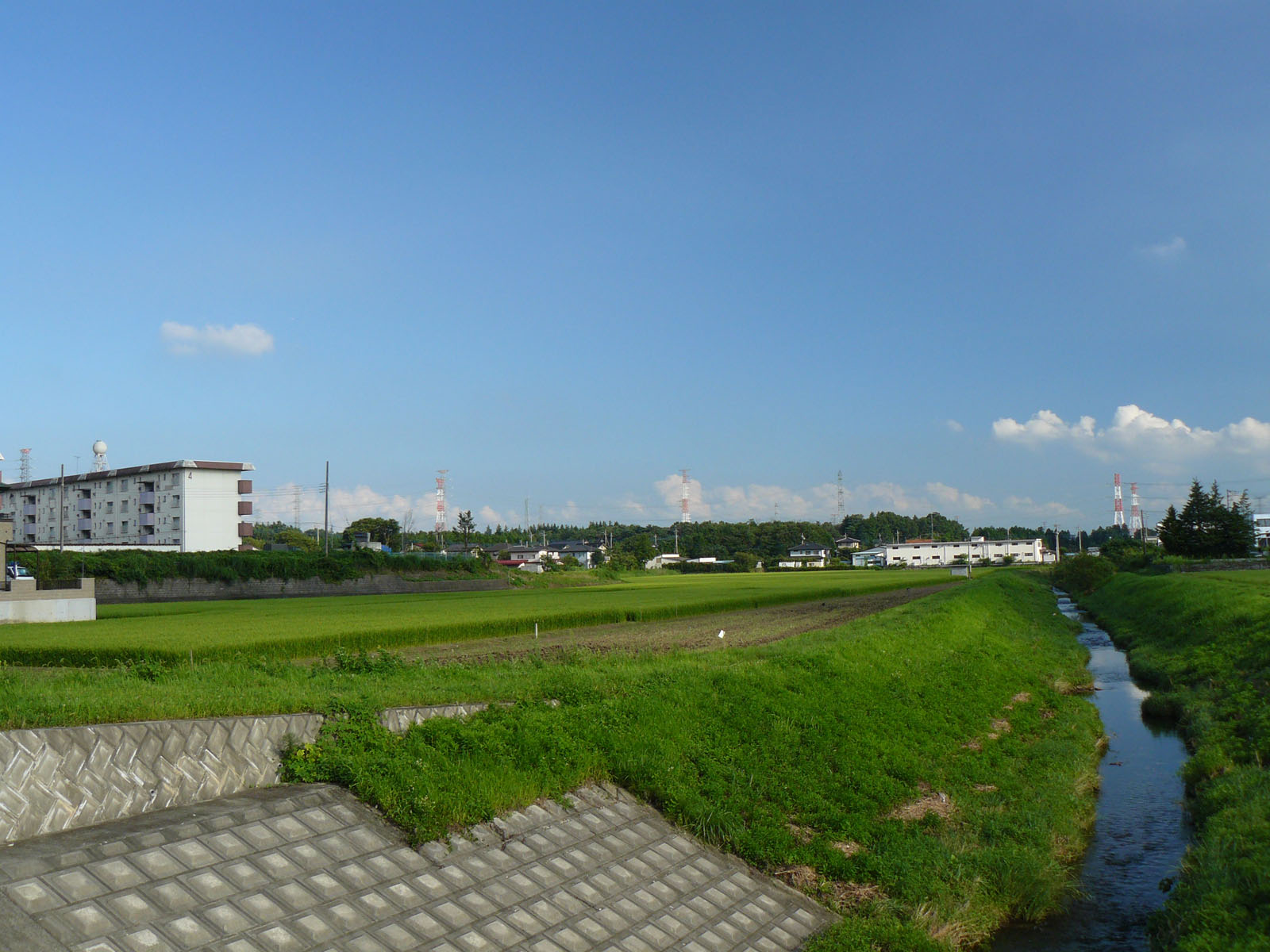 Япония фото 15986 дата размещения
