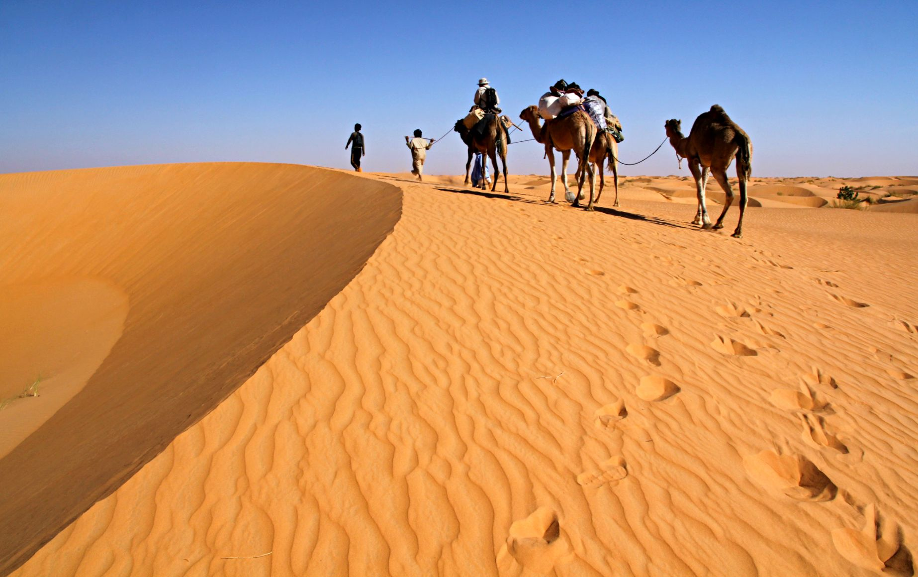 UIP : United International Pictures Pictures of mauritania africa