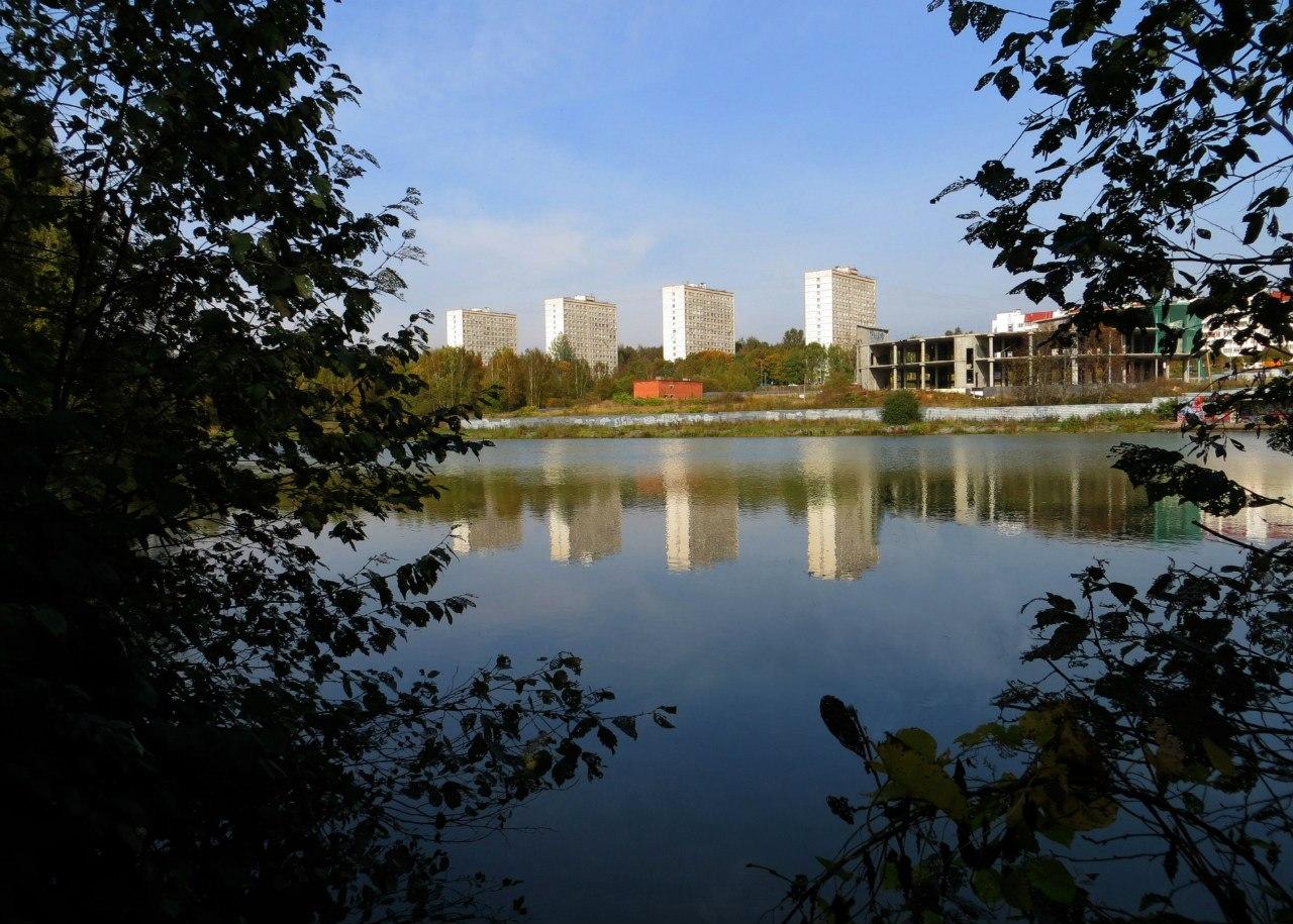 появлении фотографии города зеленограда сначала