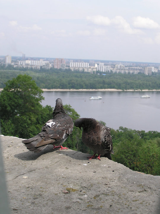 Ru Ukraine Kiev 64